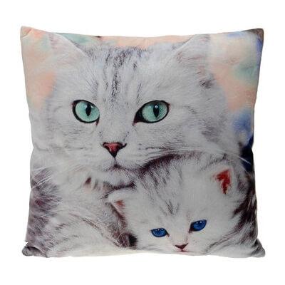 Poduszka Koty Piękne Oczy