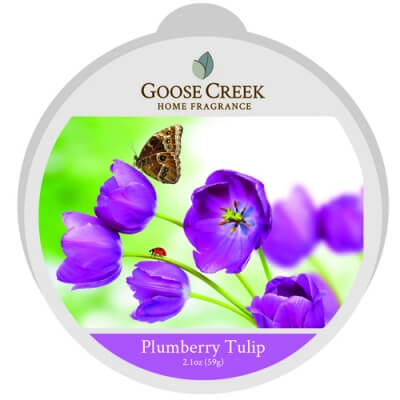 GOOSE CREEK WOSK PLUMBERRY TULIP
